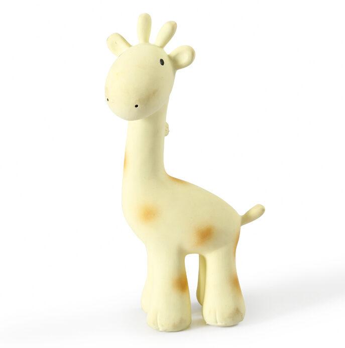 tikiri giraffe